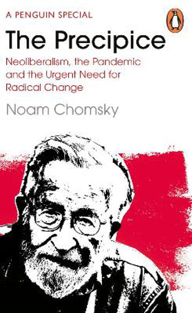 Picture of The Precipice: Neoliberalism, the Pandemic and the Urgent Need for Radical Change
