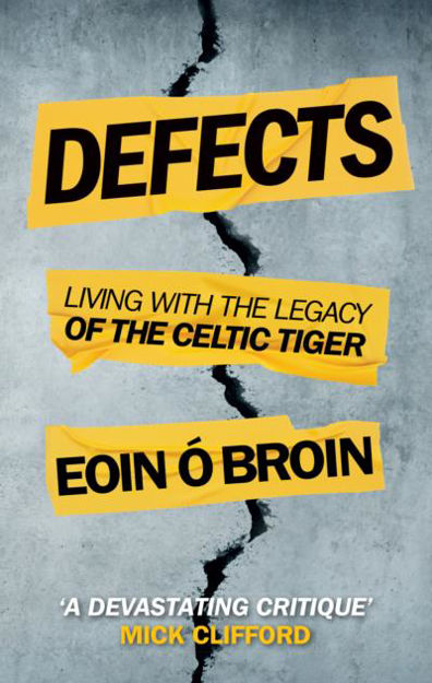 Picture of Defects: Living with the Legacy of the Celtic Tiger